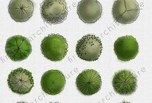 textures, materials, vegetations