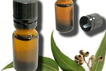 Eucalyptus Oil / K. M. Chemicals is renowned as one of the supreme Eucalyptus Oil Manufacturers, Suppliers and Exporters from India. Apart from healing properties, eucalyptus oil is highly demanded for its industrial and practical uses. The oil is a colorless liquid with a sweet and strong woody scent.