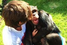 Louis Tomlinson❤