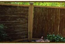 Bamboo I love!