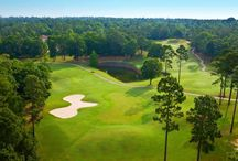 Rock Creek Golf / You'll discover one of the best conditioned 18-hole championship golf courses in Baldwin County, Alabama. But don't take our word for it, Golf Digest has consistently rated it 4.5 stars since its inception.