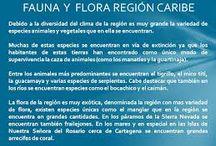 FLORA DEL NORTE DE COLOMBIA