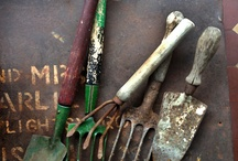 Garden Tools / by diantique