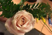 Blomsterdekoratør Del 2 / 12.02.14