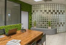 Azienda Green Creations