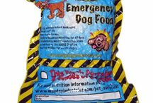 Pet Health, Safety and Survival