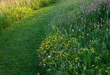 Sfeer: natuurlijke tuinen
