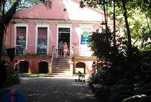 Belém do Pará-Brasil / Viagens pela região norte do Brasil