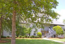 Mississippi Apartments / In addition to 1st Lake's apartments in the metro New Orleans area, we have excellent apartments at prime Mississippi locations in Jackson and Picayune. Check out these beautifully landscaped communities with spacious apartments!