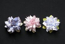 Paper flowers / by Maureen Walker