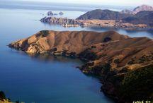 New Zealand Scenery / by Hogan Patrick