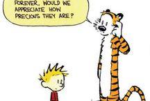 Wisdom of Calvin and Hobbes