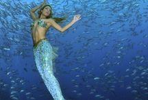 Mermaids Of The Sea / by Brenda OLorcan