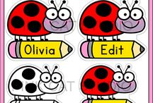 Classroom - Ladybug