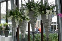 Cascade cymbidiums / #beautyfull #orchids
