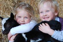Lammetjesdagen / Lammetjesdagen op de boerderij. Het leukste uitje voor het hele gezin.