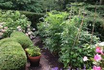 Secret (of) Garden