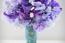Wedding: Flowers / by Samantha Markowicz