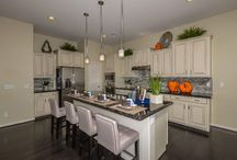Builder of the Month - William Ryan Homes / March's Builder of the Month is William Ryan Homes! Learn more about available homes and offerings here: http://bit.ly/1Cn2HPj  / by Estrella