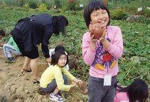 체험교육농장