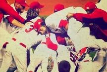 STL & The Cardinals / by Ivy Lynn Zettler