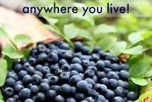növények termesztése,ápolása,