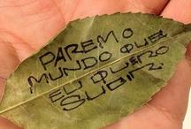 Caligrafia / by www.mybestwish.com.br Rê Nunes