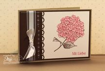 Card / Box - Best of Flowers