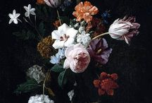 Nicolaes van Verendael (1640 -1691) / Flemish Art.