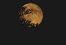 moon..