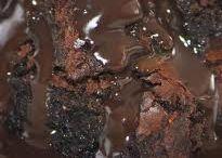 CHOCOLATE FUDGE UDDING
