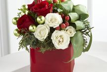 Winter Flowers / Spruce up your holidays with Christmas arrangements.