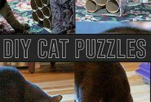 Keeping cats busy / Katten bezig houden