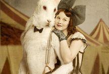 Circus Circa 1930s / by Sara Deppenbrook