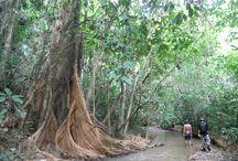 Thailand creek hiking & trekking trails