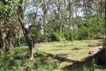3840 Sqm lot for sale in gated community in Santa Ana / https://www.coldwellbankercostarica.com/property/2758/