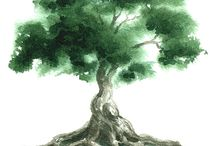 Tree of Life / by Geri Lamb