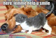 Makes Me Smile!
