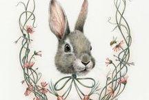 зайцы-кролики