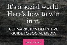 Digital Marketing for Divers - SEO