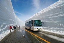 กำแพงหิมะ Tateyama Kurobe Alpine Route, Japan