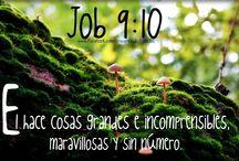 Notas / Bíblicas