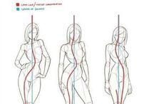 anatomiy