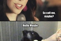 Funny / by Jessica Novellino