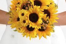Sunflower Wedding Bouquet / Wedding Flower Ideas for bouquets, corsages, boutonnieres,  centerpieces and church decorations.  Easy step by step tutorials.  Buy discount wedding flowers and professional florist supplies