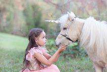 Inspire Horse