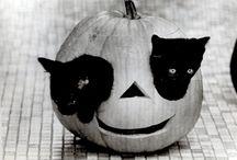 Halloween / by Chris Steller