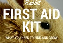 Bunny first aid kits