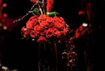 черно-красное