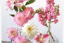 Flower (blomster)